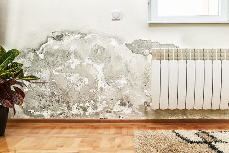 Photo pour Damage caused by damp on a wall in modern house - image libre de droit