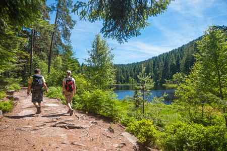 Hikers at the Herrenwieser See, Westweg, Forbach, Black Forest, Baden-Wuerttemberg, Germany, Europe