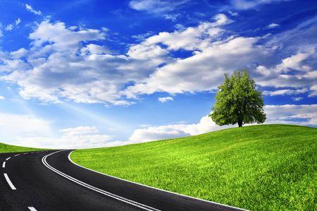 Photo pour Green tree and empty road - image libre de droit