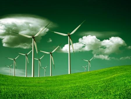 Foto de Ecology - Imagen libre de derechos