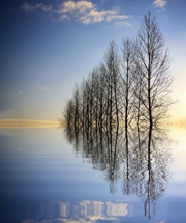 Photo pour Forces of nature - image libre de droit