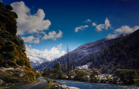 Photo for Riverside Road - Royalty Free Image