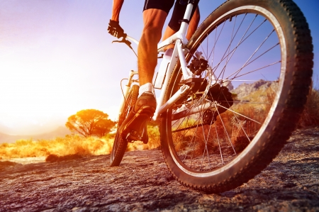 low angle view of cyclist riding mountain bike on rocky trail at sunrise mural