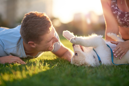 Foto de Man playing with puppy on grass with girlfriend, pet bonding best friend healthy outdoor lifestyle - Imagen libre de derechos