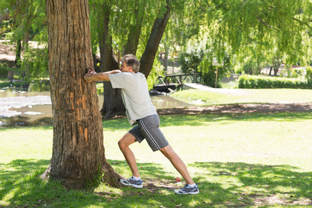 Photo for Full length side view of man doing stretching exercise against a tree in the park - Royalty Free Image
