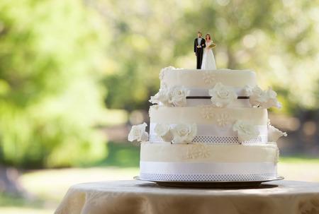 Photo pour Close-up of figurine couple on wedding cake at the park - image libre de droit