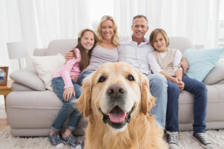Foto de Family sitting on the couch with golden retriever in foreground at home in the living room - Imagen libre de derechos