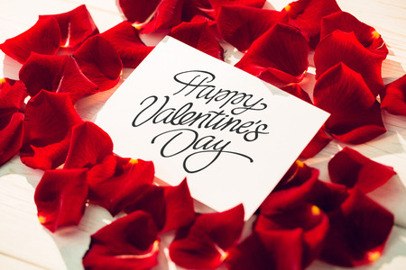Photo pour Happy valentines day against card surrounded by rose petals - image libre de droit