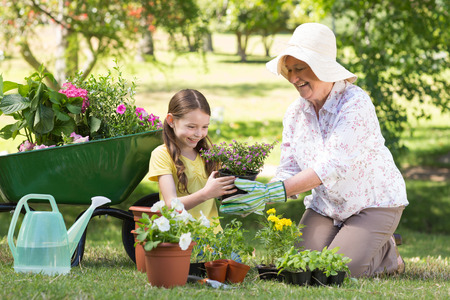 Photo pour Happy grandmother with her granddaughter gardening on a sunny day - image libre de droit