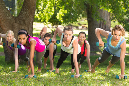 Photo for Fitness group planking in park on a sunny day - Royalty Free Image