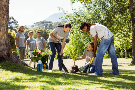 Photo for Team of volunteers gardening together on a sunny day - Royalty Free Image