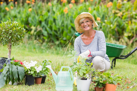 Photo pour Happy grandmother gardening on a sunny day - image libre de droit