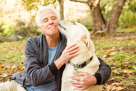 Photo for Senior man with his dog in park on an autumns day - Royalty Free Image