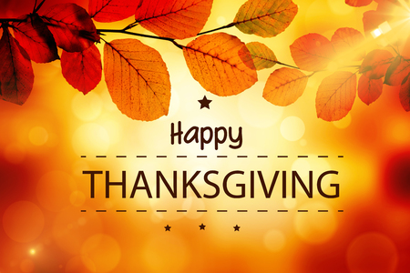 Photo for Happy thanksgiving against golden leaves - Royalty Free Image