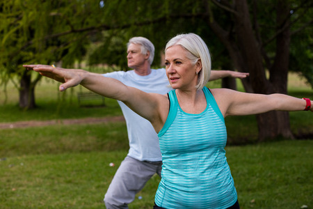 Photo for Senior couple exercising together in the park - Royalty Free Image