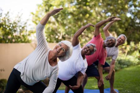 Foto de Portrait of smiling senior friends exercising with arms raised on mats at park - Imagen libre de derechos