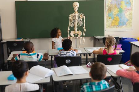 Foto de Rear view of little schoolgirl explaining human skeleton model in classroom of elementary school - Imagen libre de derechos