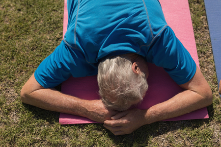 Photo pour High angle view of active senior man performing yoga on his stomach on yoga mat in the park - image libre de droit