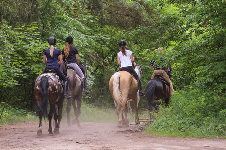 Photo pour Group of people riding horses in the forest - image libre de droit