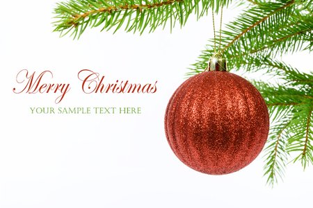 Foto de Shining red Christmas ball hanging from a branch of a Christmas tree isolated on a white background with copy space place (sample text). - Imagen libre de derechos