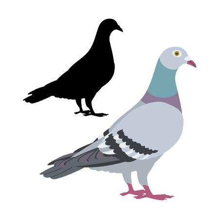 Ilustración de pigeon  bird vector illustration flat style black silhouette set - Imagen libre de derechos