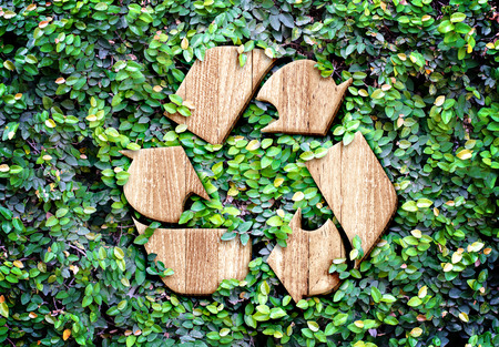 Photo for Eco concept :Wood texture Recycle icon on green leaves wall. - Royalty Free Image