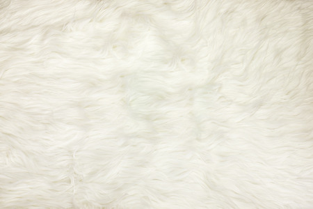 Foto de Close up at white fur fabric texture background. - Imagen libre de derechos