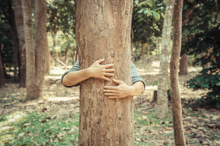 Photo pour man hugging a big tree  love nature concept - image libre de droit