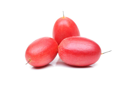 Photo for Miracle fruit; Miracle berry (Synsepalum dulcificum) - Royalty Free Image