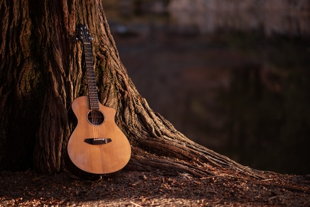 Photo for Wooden Acoustic Guitar and the Tree Music Concept Photo. - Royalty Free Image