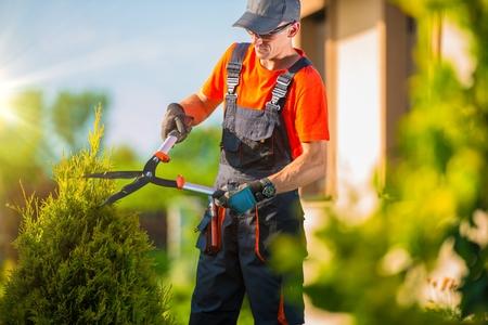 Photo pour Professional Gardener Trimming Plants in the Garden. Gardener Using Bush Trimmer. - image libre de droit