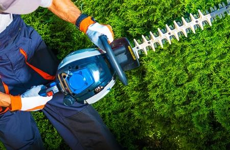 Photo pour Gardener with His Gasoline Hedge Trimmer in Action. - image libre de droit
