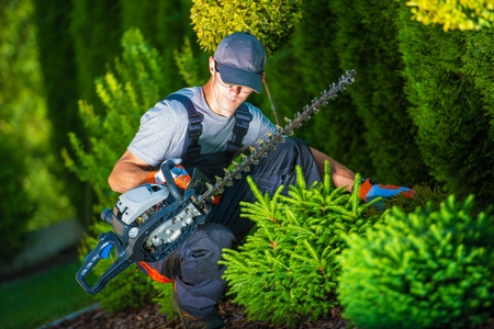 Photo pour Trimming Works in a Garden. Professional Gardener with His Pro Garden Equipment During His Work. Gasoline Plants Trimmer Equipment. - image libre de droit