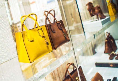 Photo for Luxury Purses and Shoes Shopping. Luxury Goods Concept Photo. Store Display. - Royalty Free Image