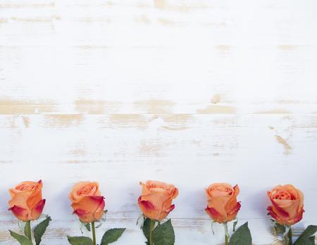 Foto de beautiful orange roses  lined up in a row on a white vintage wooden background - Imagen libre de derechos