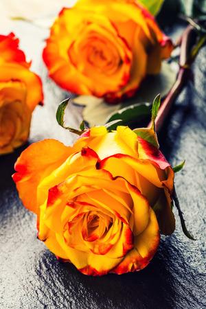 Photo pour Rose. Orange rose. Yellow rose. Several orange roses on Granite background - image libre de droit