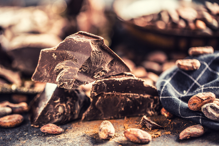 Photo for Dark chokolate cocoa beans and powder on concrete table. - Royalty Free Image
