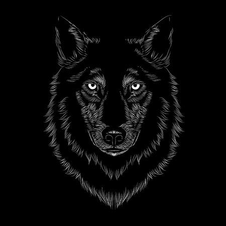 Illustrazione per Line art Wolf face illustration on a black background - Immagini Royalty Free