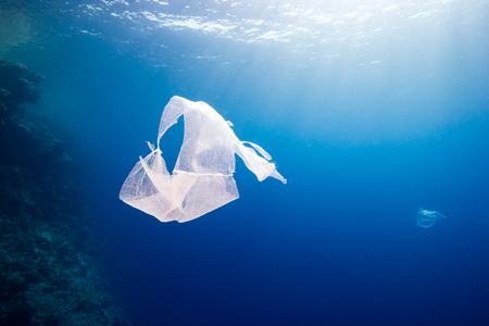 Foto de Environmental pollution - a discarded plastic bag floats next to a tropical coral reef - Imagen libre de derechos