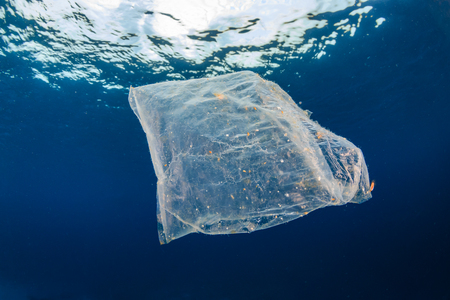 Photo pour Marine Pollution - a discarded plastic packet floats in the ocean above an otherwise healthy tropical coral reef - image libre de droit