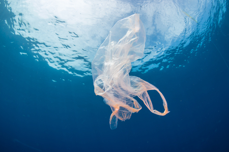 Photo for Plastic pollution:- A discarded plastic bag floats in a clear, blue water, tropical ocean - Royalty Free Image