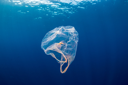 Foto de Underwater pollution:- A discarded plastic carrier bag drifting in a tropical, blue water ocean - Imagen libre de derechos