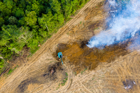 Photo for Aerial view of deforestation.  Rainforest being removed to make way for palm oil and rubber plantations - Royalty Free Image