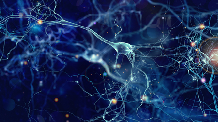 Foto de Neurons cells concept - Imagen libre de derechos