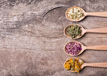 Photo pour Nature medicine . Herbs in wooden spoon . - image libre de droit