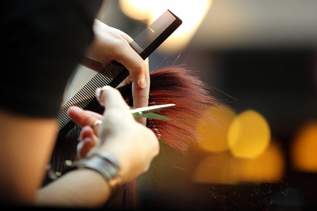 Foto de Hairdresser trimming brown hair with scissors - Imagen libre de derechos