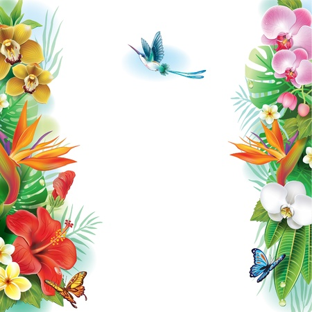 Illustration pour Border from tropical flowers and leaves - image libre de droit