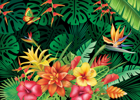 Illustration for Illustration with tropical plants - Royalty Free Image