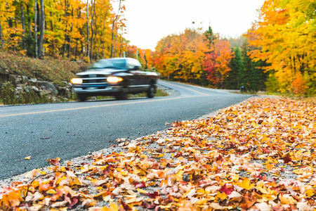 Photo pour Pickup on countryside road with autumn colors and trees. Blurred car passing, focus on leaves on the ground in foreground. Travel and autumn concepts. - image libre de droit