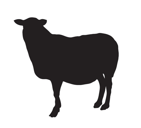Abstract black silhouette of a sheep.